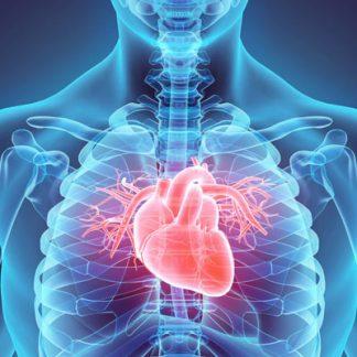 cardiovascular-disease