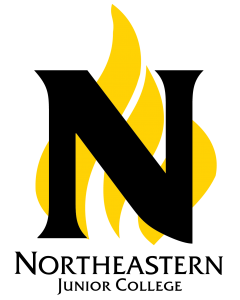 northeastern-junior-flame-logo